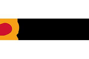Reynasa logo