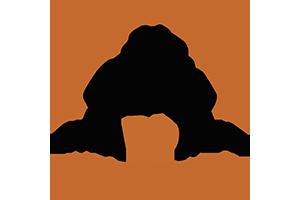 MAPOMA logo